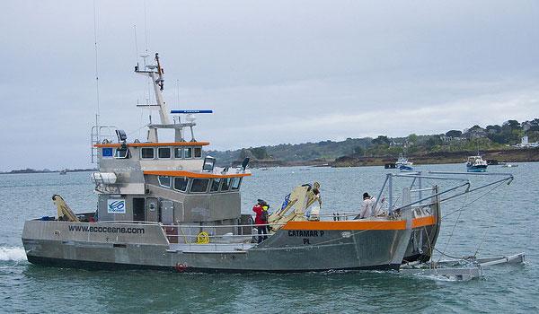 Der Reinigungsschiffe, die für die Reinigung der Oberfläche der Gewässer auf See bestimmt sind - Spillglop® serie